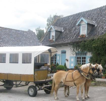 auberge du noord meulen : chariot et chevaux